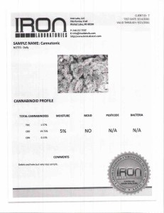 Iron Labs-page-002