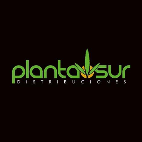 Planta Sur